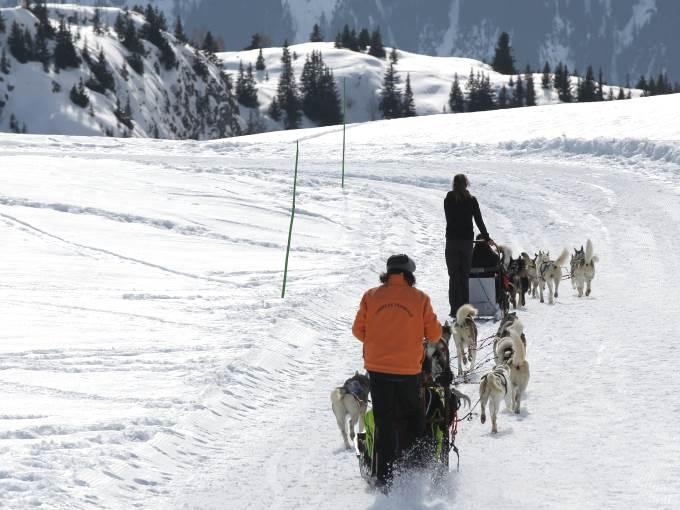 Image France Alpe Huez les Bergers neige piste