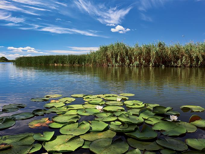 Image europe roumanie la delta du danube