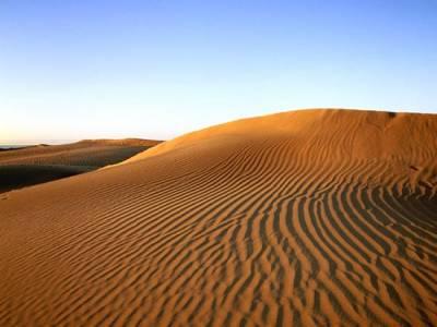 (Image) Image scolaire  canaries.tenerife.circuit.du.sud.au.nord.desert