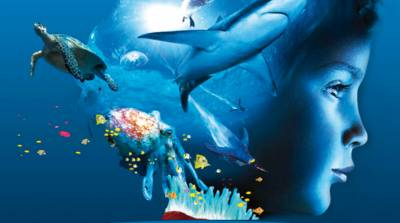 Image scolaire  oceanopolis