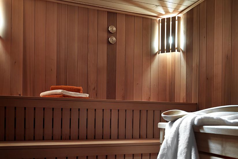 image AE CHG samoens la reine des pres 4