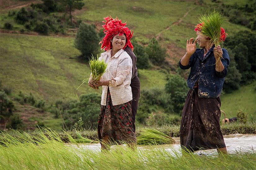 image Asie Birmanie
