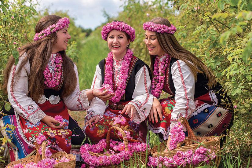 image Bulgarie Filles cueillette roses  fo