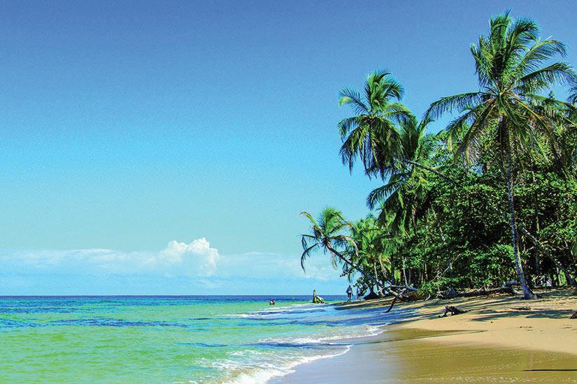 Favori Circuit au Costa Rica : Le Costa Rica au naturel 14 jours  EN46