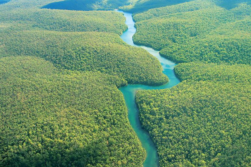image Equateur Amazonie riviere foret Vue aerienne  it