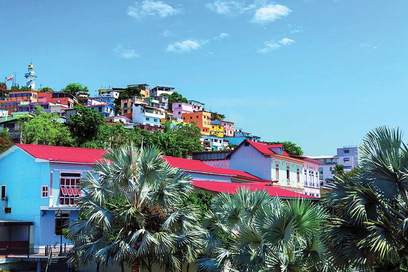 image Equateur Santa Ana Panorama  fo
