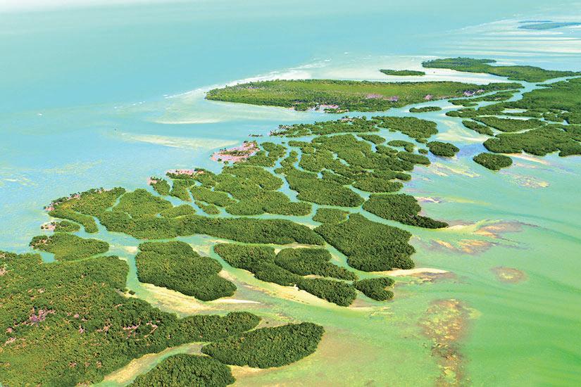 image Etats Unis Floride Keys de Floride  it
