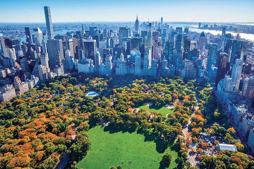 image Etats Unis New York Central Park  it