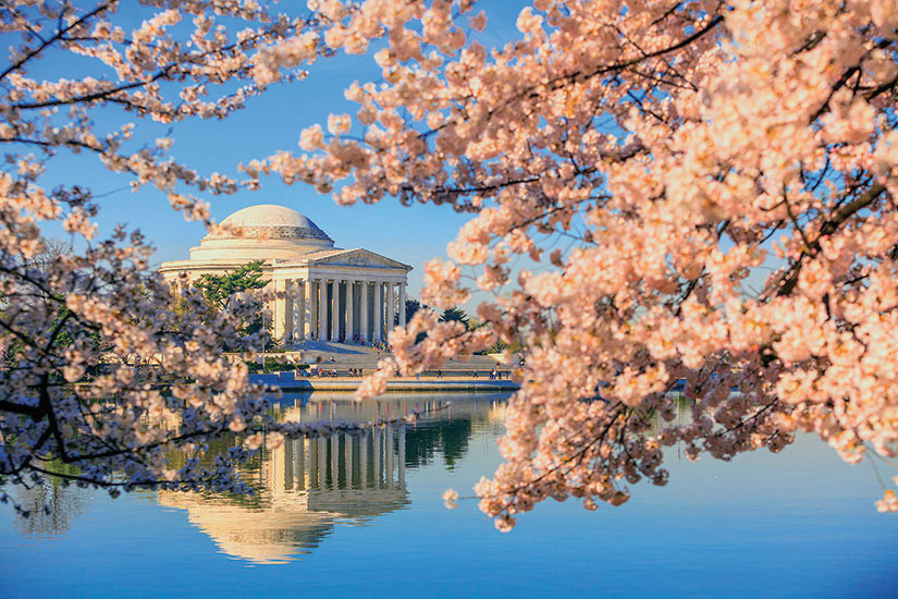 image Etats Unis Washington Jefferson Memorial  fo