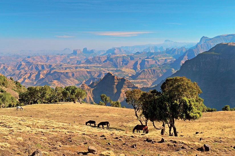 image Ethiopie Montagnes Simien Panorama  it