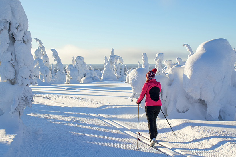 image Finlande Laponie ski de fond 09 as_116680868