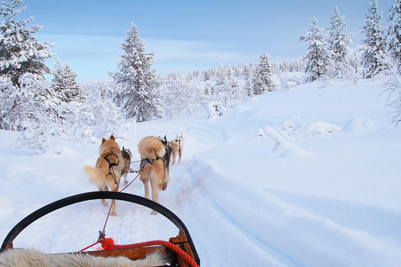 image Finlande Splendeurs de Laponie