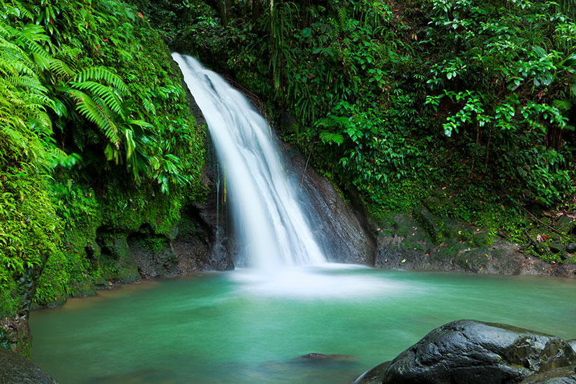 image France Guadeloupe Cascades aux Ecrevisses  it