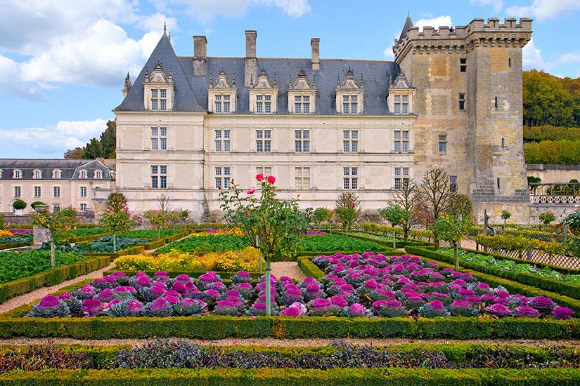 image France Loire Jardins chateau Villandry  fo