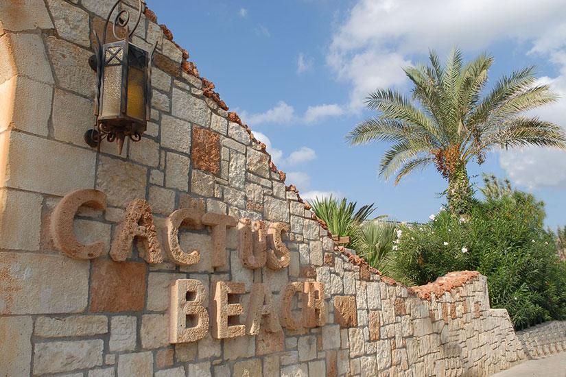 image Grece stalis hotel cactus beach nom hotel