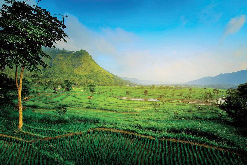 image Indonesie Bali  fo