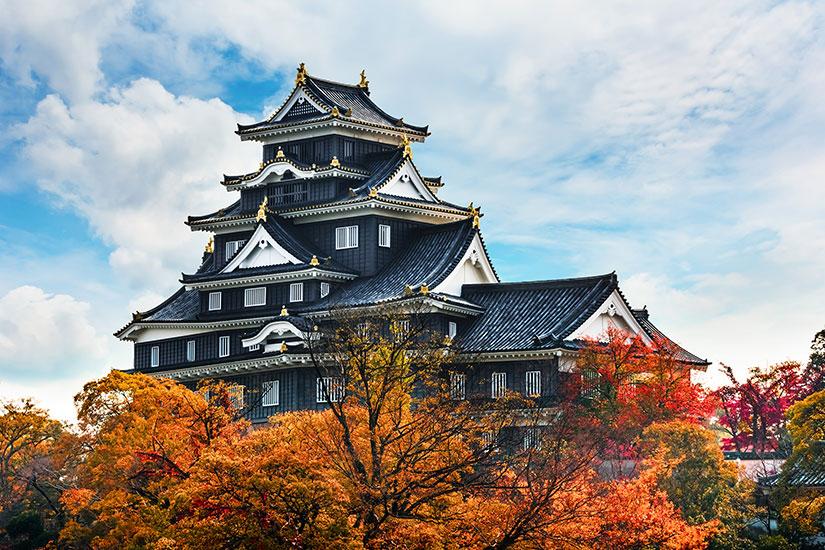 image Japon  it