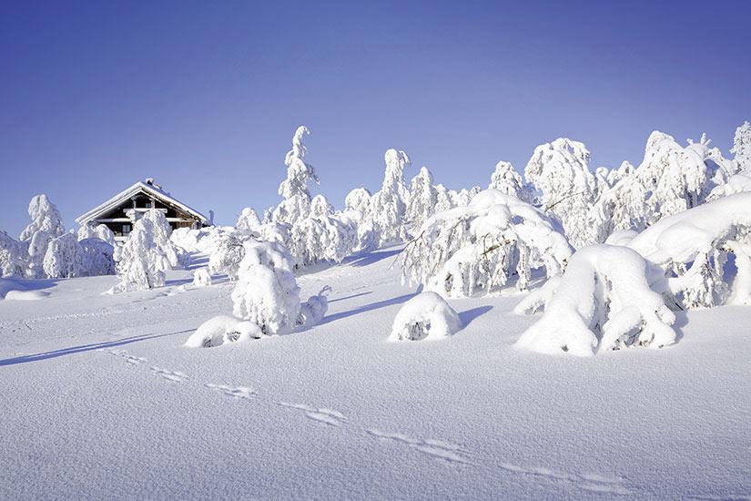 image Laponie paysage hiver  it