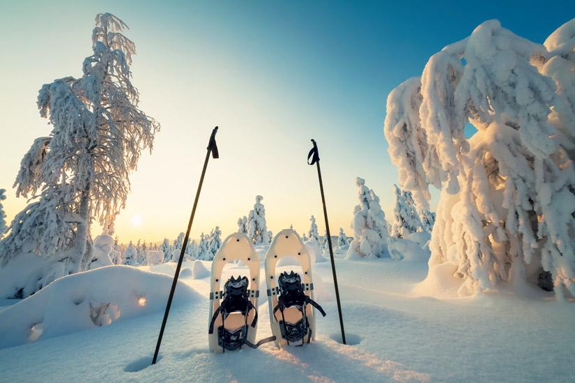 image Laponie suedoise hiver neige arbre ciel paysage raquettes 30 it_498743106