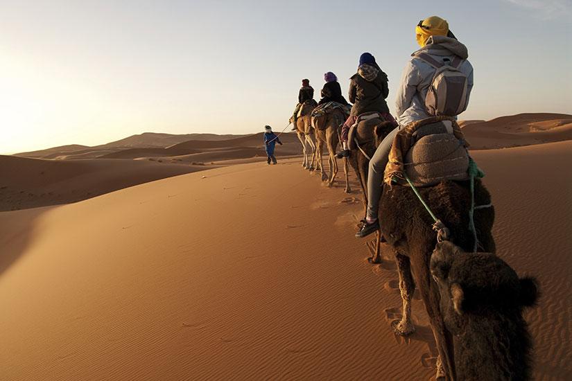 image Maroc touristes chameaux desert  it