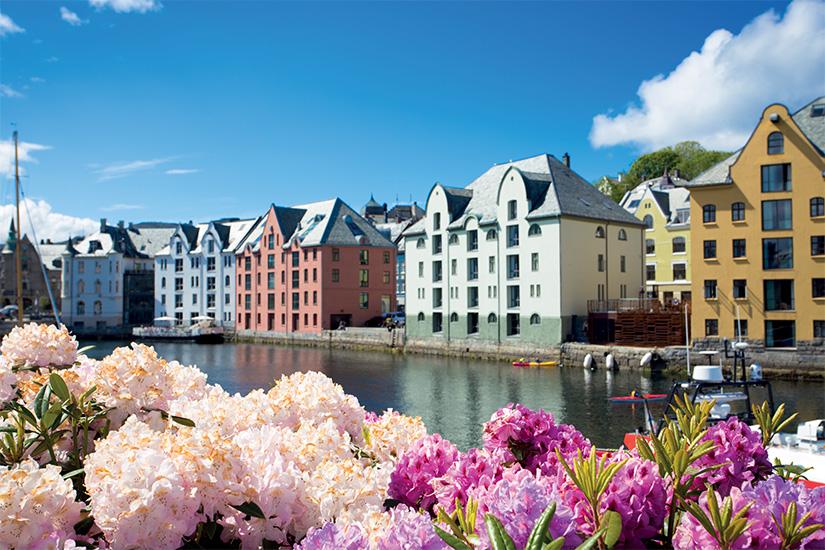 image Norvege Alesund fleurs is_497710040