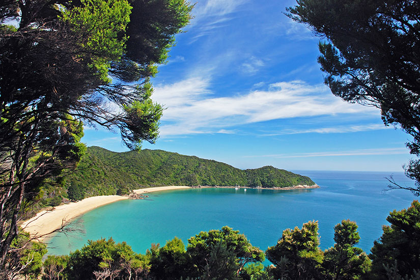 image Nouvelle Zelande Abel Tasman parc panorama  fo