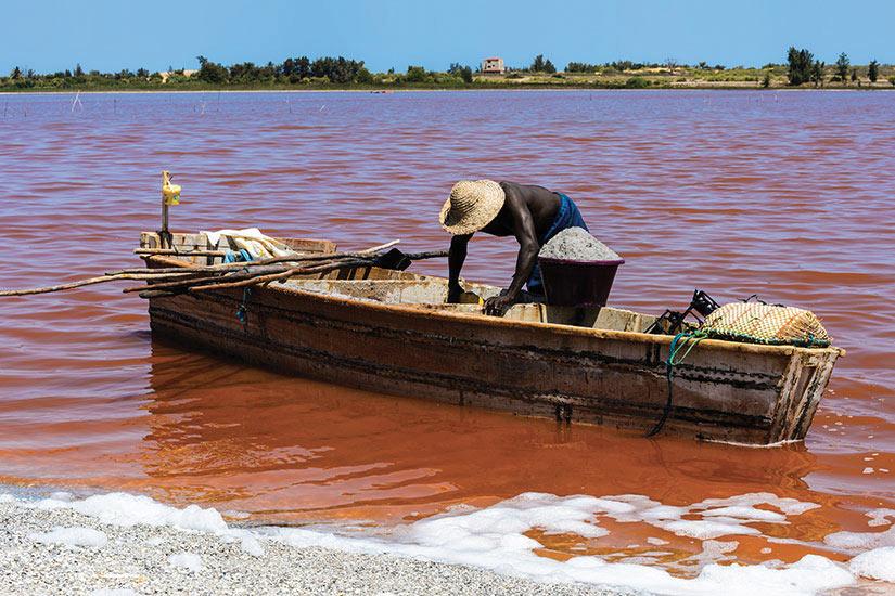 image Senegal lac Rose homme africain sur le bateau en boissur le lac Rouge  fo