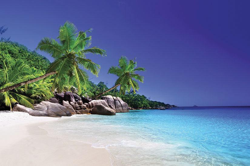 image Seychelles Praslin plage  fo