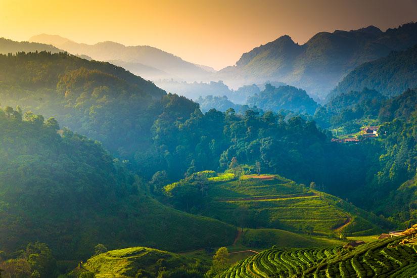 image Thailande Montagnes brumeuses matin  it
