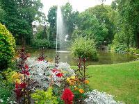 Image scolaire  le.jardin.des.plantes.a.nantes