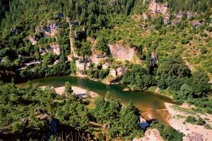 vignette Gorges du Tarn France Languedoc Roussillon 70 it_173606243