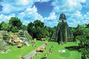 guatemala tikal vue de ruines panorama  fo