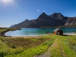 vignette lofoten norvege