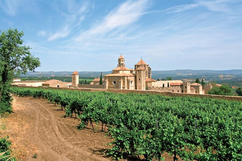 (image) image Monastere de Santa Maria de Poblet et vignobles 72 as_18292432