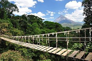 costa rica pont jungle  fo