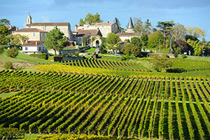 (vignette) Vignette France Bordeaux Saint Emilion Vignobles  it