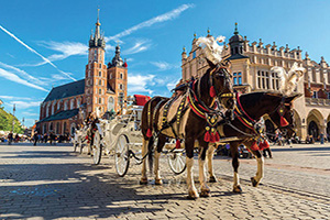 pologne cracovie vieille ville chariot  fo