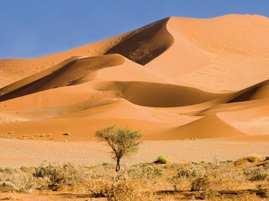 voyage afrique du sud desert namib