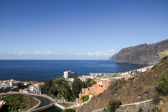 (Image) canaries