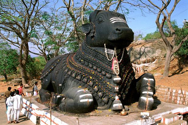 inde mysore nandy bull
