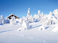 miniNT finlande laponie hiver  istock