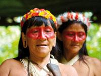 mini equateur amazonie tribu  fotolia