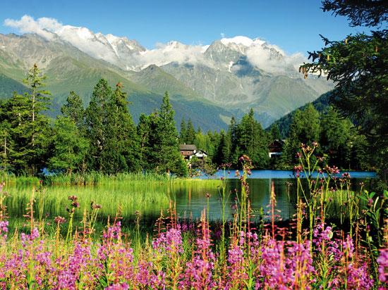 Voyage En Autocar En Suisse Suisse Les Trains De